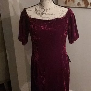 NEW w/tags Eliza J. Red Crushed velvet Dress